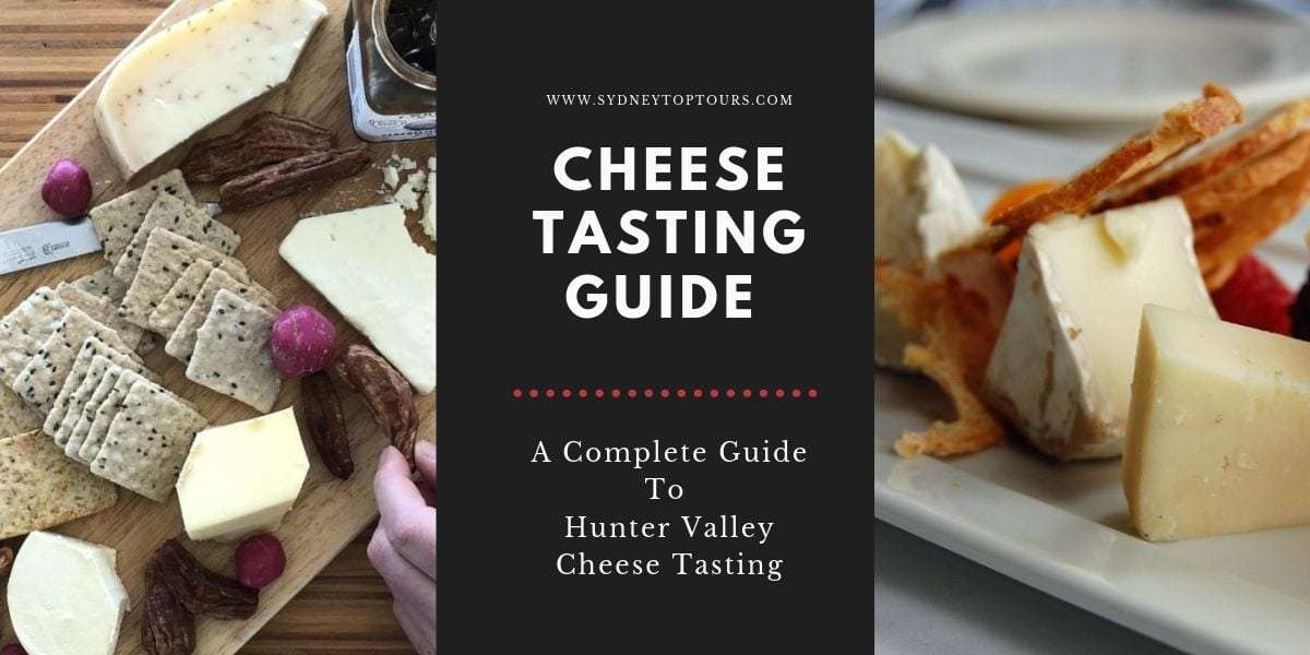 hunter valley wine and cheese tours