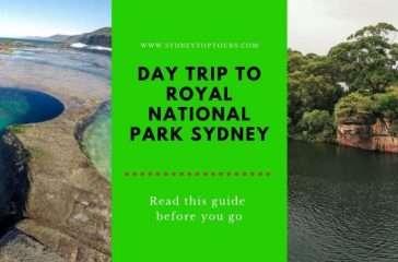 Royal National Park Tours