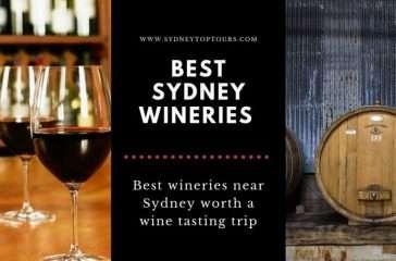 Best Sydney Wine Tours