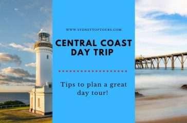 Central Coast Day Trip