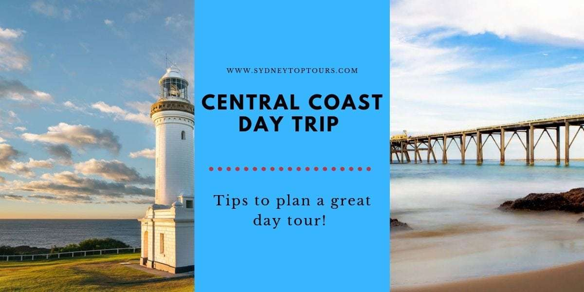 Central Coast Day Trip