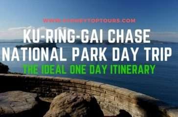 Ku-Ring-Gai Chase Day Trip