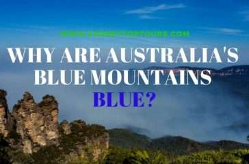 Why are Australia's Blue Mountains blue